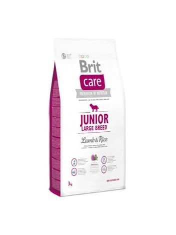 BRIT CARE JUNIOR LARGE BREED LAMB & RICE - 24KG (12KGx2)