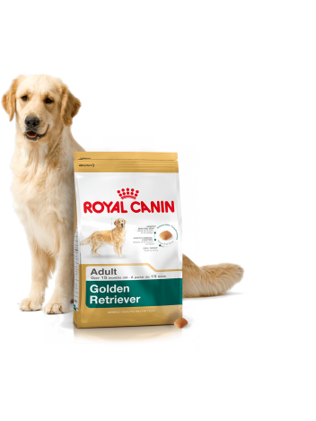 ROYAL CANIN GOLDEN RETRIEVER - 12KG + PROMOCJA 4+1 GRATIS!!!