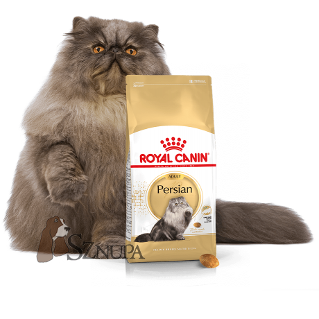 ROYAL CANIN PERSIAN 30 - 20KG (10KGx2)