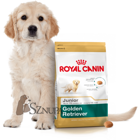 ROYAL CANIN GOLDEN RETRIEVER JUNIOR - 24KG (12KGx2)