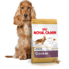 ROYAL CANIN COCKER - 24KG (12KGx2)