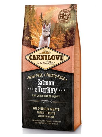 CARNILOVE SALMON & TURKEY PUPPY LARGE BREED - 12KG