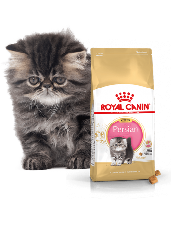 ROYAL CANIN KITTEN PERSIAN 32 - 800G (400Gx2)