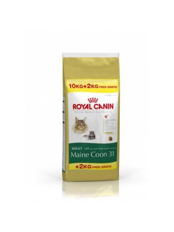 ROYAL CANIN MAINE COON 31 - 10KG + 2KG